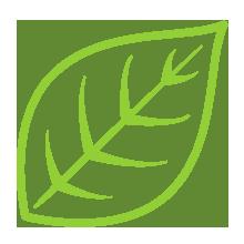 natural_icon